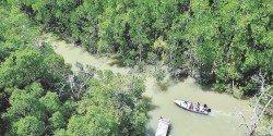 埔萊河2003年被劃為藍紗濕地,獲得國際認同是重要保護區。