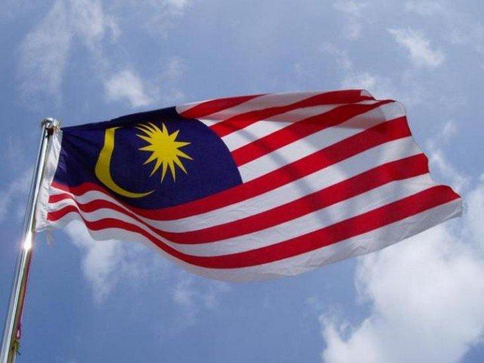 馬來西亞計劃與左翼運動