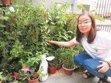 姚婷婷通過上課學習種植及進修中醫課程,增加對中藥及草藥的認識。