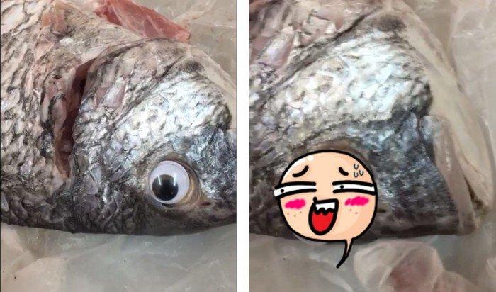 魚販幫死魚「裝鮮」 創意新招笑倒眾人