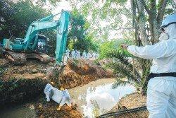 巴西古當金金河化學廢料污染事件邁入第10天,全副武裝的工作人員馬不停蹄地進行清理工作。