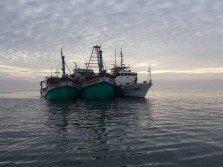 來自柔佛州西部海域的大馬海事執法機構巡邏艇發現兩艘非法捕魚越南漁船後,攔截並搜查上述兩艘漁船。