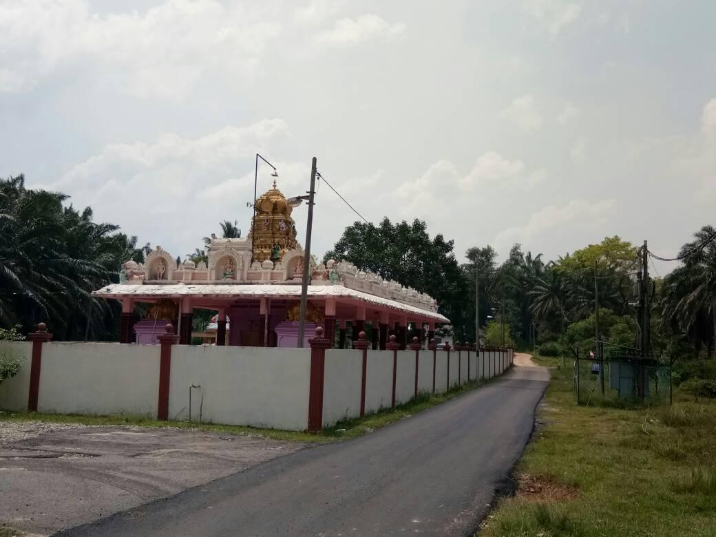 警方在兴都庙发现毒贩后,连开2枪制伏毒贩及当场将3人逮捕。
