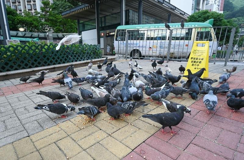 承办商人员将会在喂饲点放置告示牌,以提醒市民有关计划正在进行当中。(图取自香港渔护署官网)