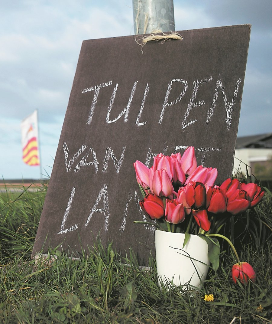 """当地人在路旁置放新鲜采收的郁金香花朵,并用粉笔字写上""""来自这个国家的郁金香"""",欢迎世界各地慕名而来赏花的游客。"""