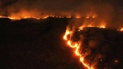 不堪国际舆论施压 巴西总统下令军队救火