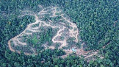 大马自然环境之友日前在社交媒体发布沙容升旗山森林保护区山顶上有20公顷森林被伐光照片,引起哗然。