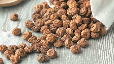 """被誉为""""超级食物""""的虎坚果(tiger nut)全球巿场供不应求,市场潜力无限。"""