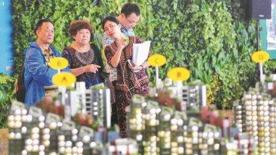 政治不稳定令港人移居大马询问度高,惟房产商仍在观望市场。