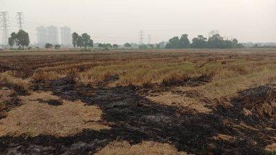 甲州环境局在武吉南眉稻田区发现2处热点,并已即时扑灭火势。